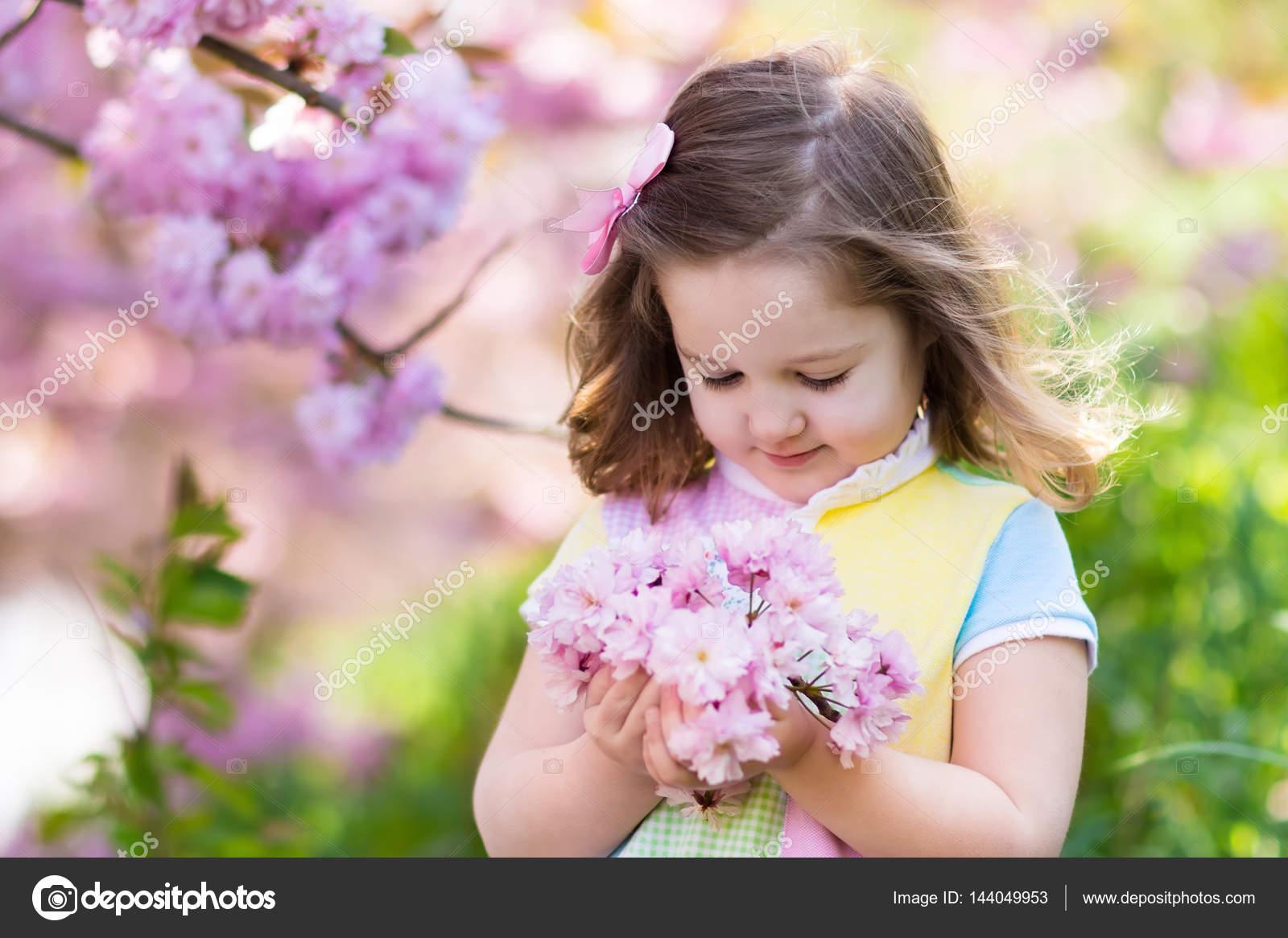 Little Girl With Cherry Blossom Stock Photo Famveldman 144049953