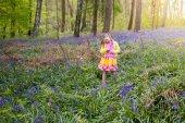 Fotografie Kind mit Bluebell Blumen im Frühlingswald