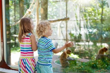 Boy and girl with monkey at zoo. Kids and animals.