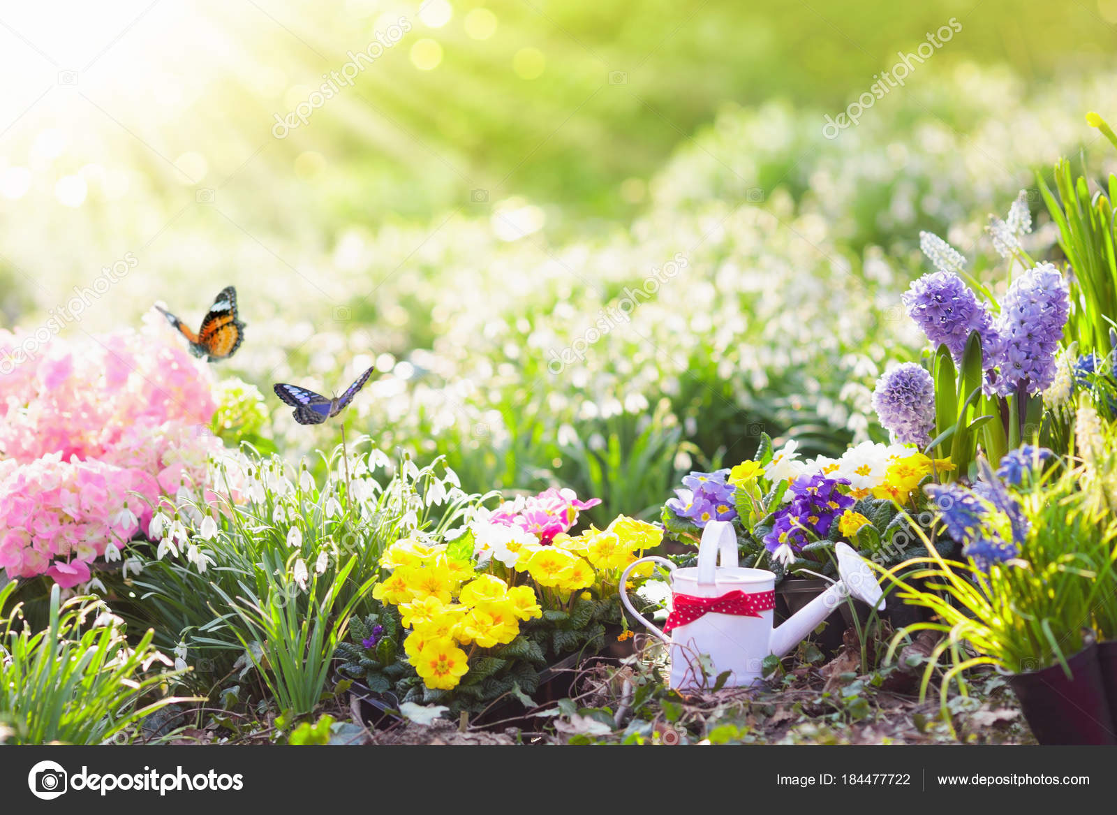 Spring Garden With Flowers Gardening Tools Stock Photo