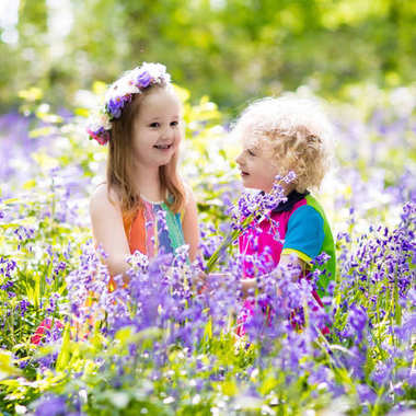 Kids with bluebell flowers, garden tools and wheelbarrow. Boy and girl gardening. Children play outdoor in bluebells, work, plant and water blue bell flower bed. Family fun in summer forest. stock vector