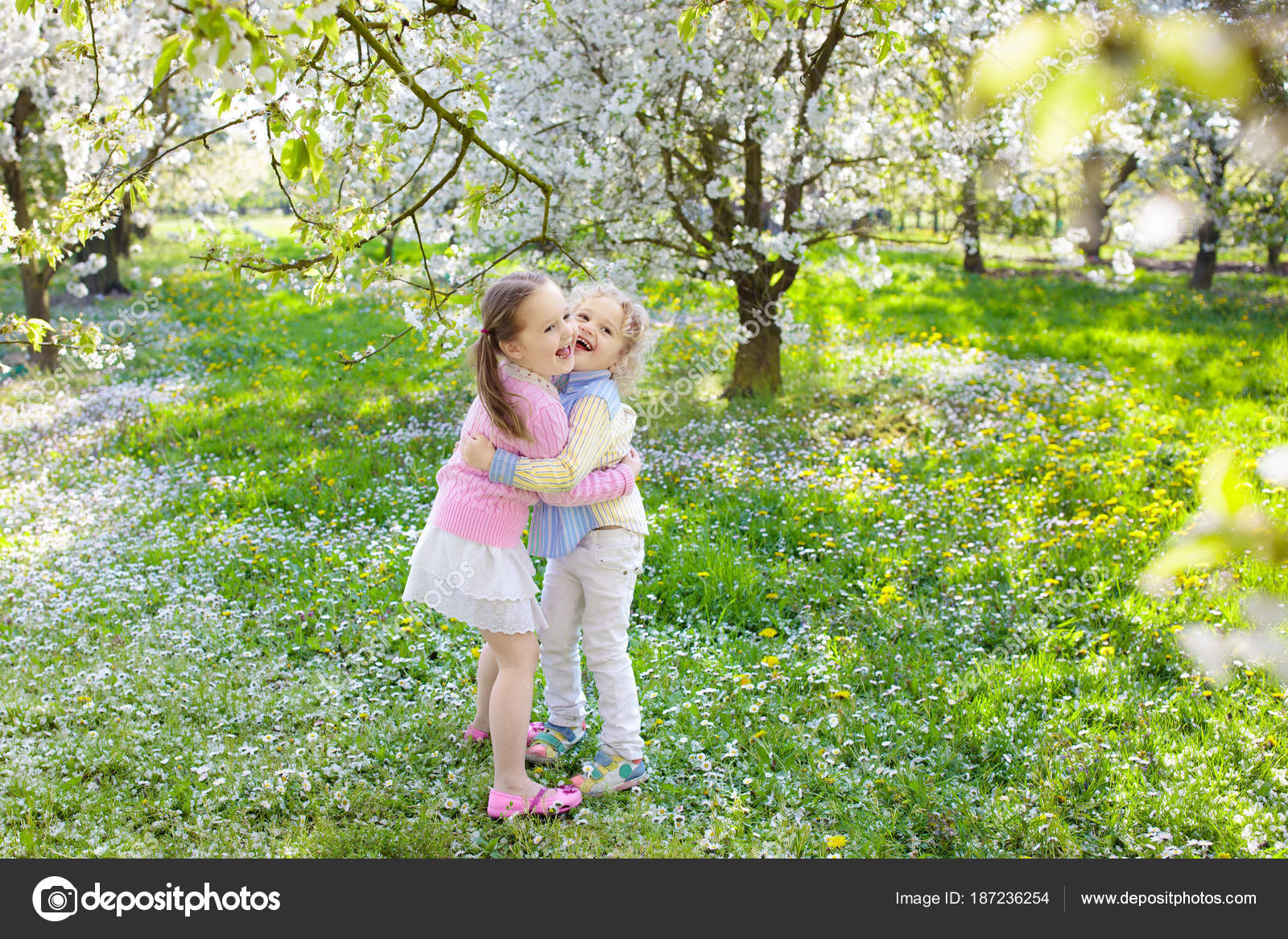 c7508729fdebc Enfants jouant dans le jardin de fleurs de cerisiers en fleurs. Petit  garçon et une fille avec des fleurs de printemps dans le verger.