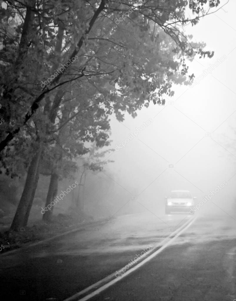 Car on the road in the fog. Autumn landscape.