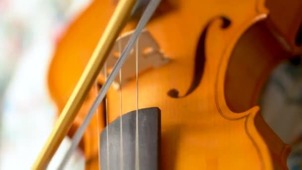Zenész hegedül. Íjmozgás a húrok mentén, közelkép