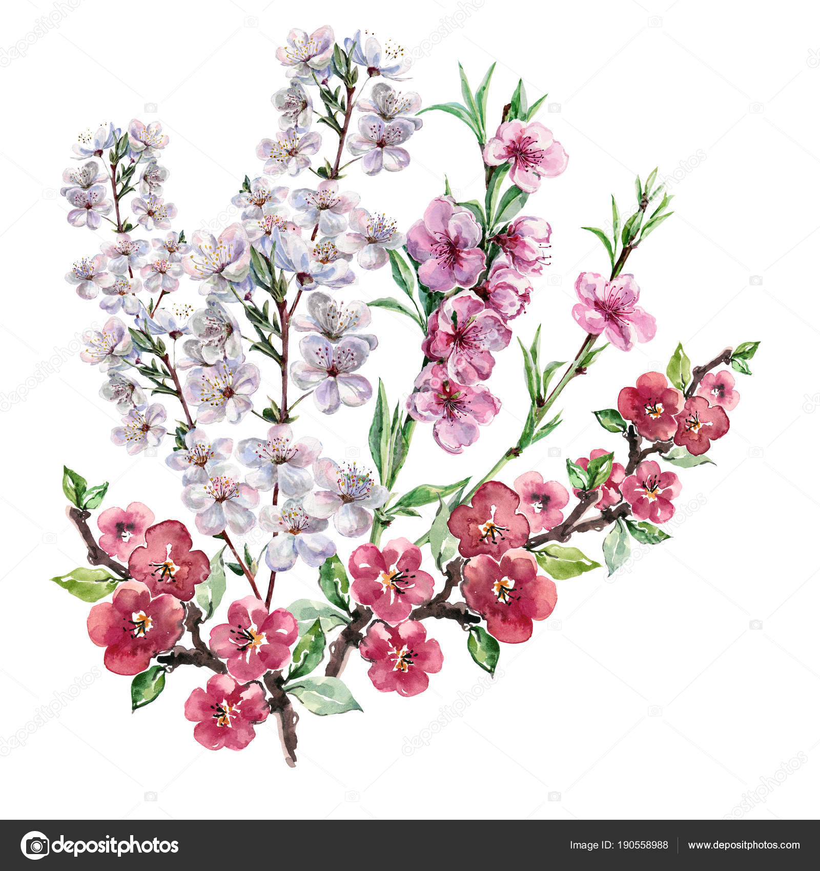 Watercolor Bouquet Spring Flowers Blooming Tree Illustration White