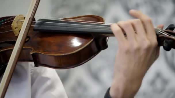 Közelkép. Egy férfi hegedül. Virtuóz. a hegedűs az étteremben.