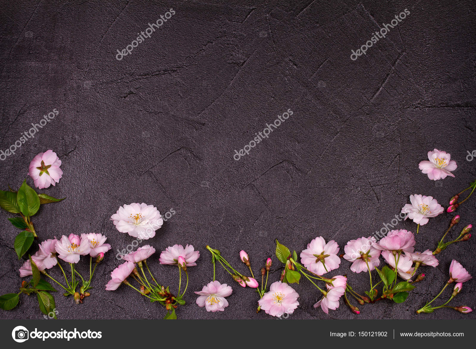 Flower frame on gray shabby chic background springtime blooming flower frame on gray shabby chic background springtime blooming pink spring flowers top mightylinksfo