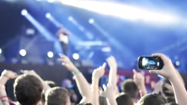 Sommermusik-Festival. Menschen auf einem Konzert