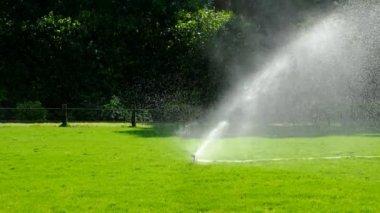 impianto di irrigazione del prato il giardino in erba