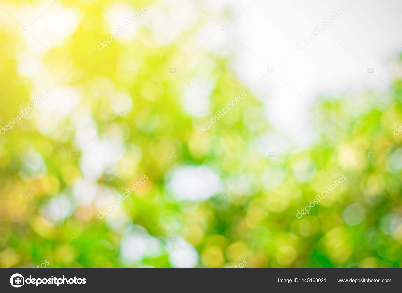 Sfondo Verde Natura Foto Stock Thawornnulove 145163021