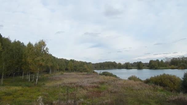 Gyönyörű partján, a tó, a virágzó fák, a fű