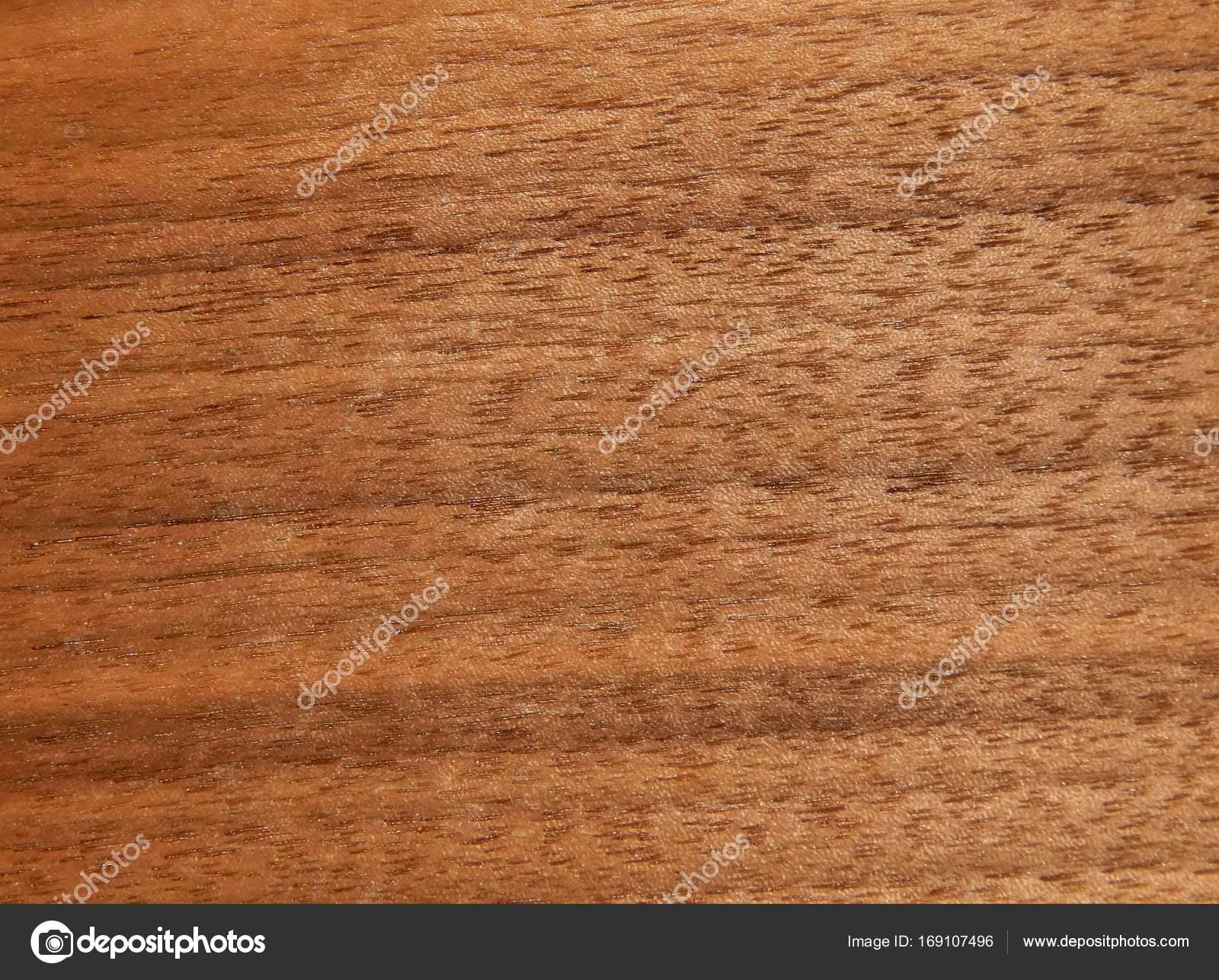 Scurire Mobili Impiallacciati : Struttura di una superficie in legno di un albero di noce americano