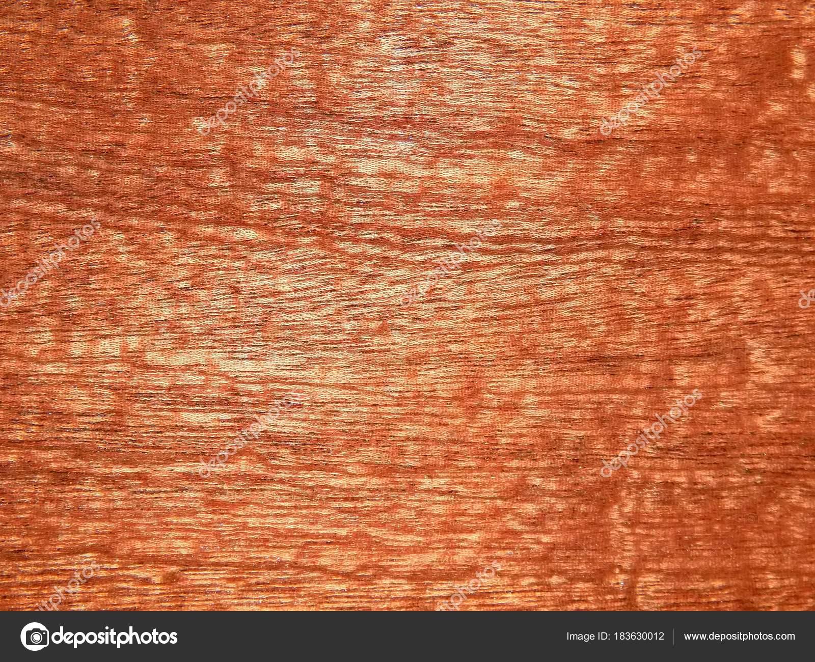 Superficie Madera Del Nogal Europeo Material Decoración Para Muebles ...