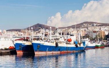 Ships are pictured docked in port Las Palmas de Gran Canaria, Spain.