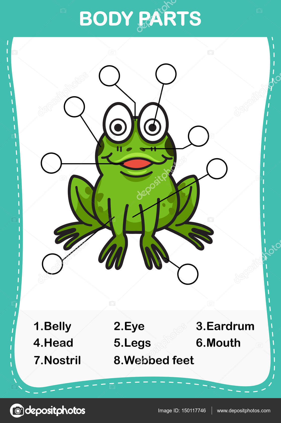 Illustration of frog vocabulary part of body,Write the correct n ...
