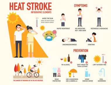 Heat stroke risk sign and symptom and prevention infographic,vec