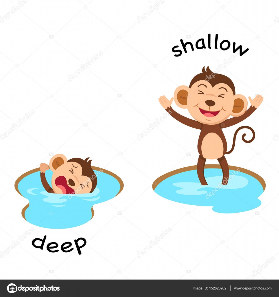 Opposite Words Deep And Shallow Vector Stock Vector
