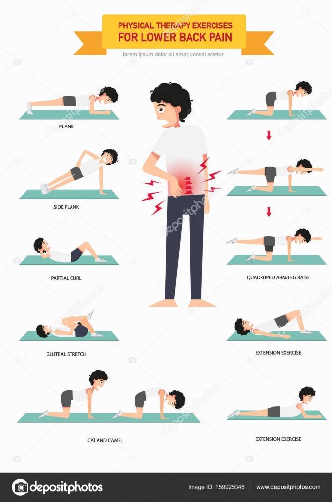 Super Fysiotherapie oefeningen voor de lagere rugpijn infographic, illu  QG09