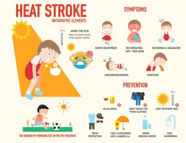 Heat stroke risk sign and symptom and prevention infographic, il