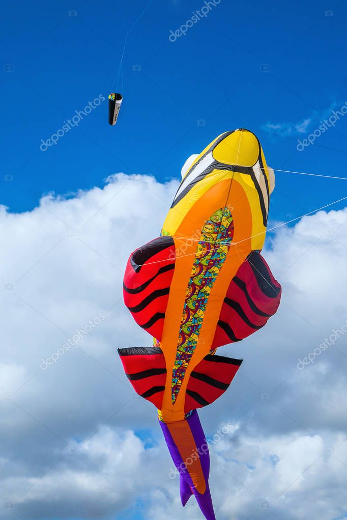 Fish-shaped colorful kite and blue cloudy sky