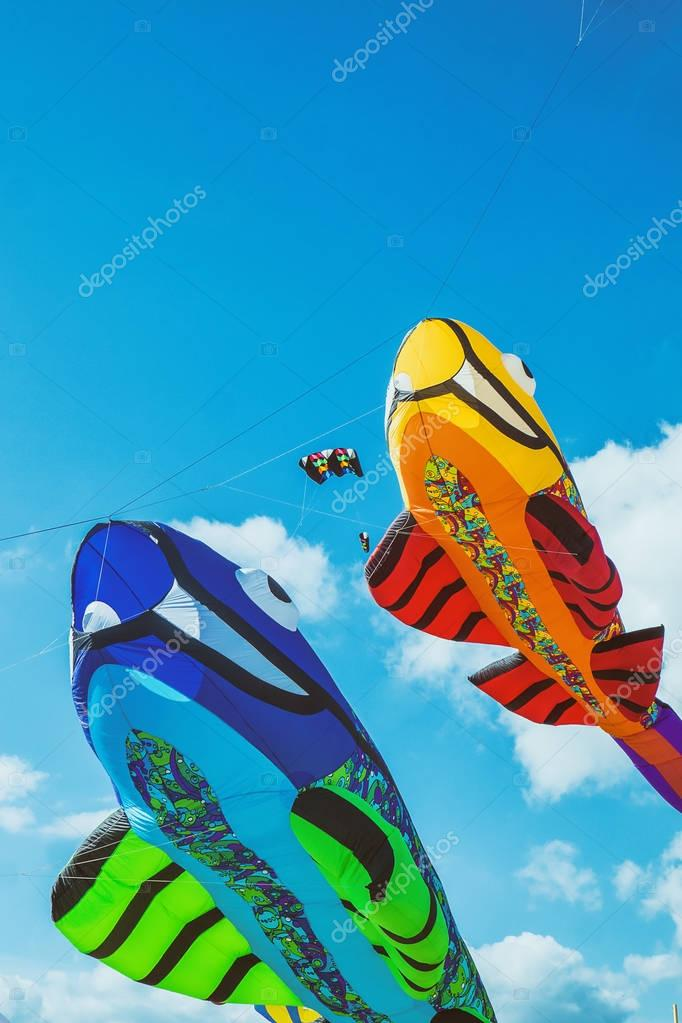 Fish-shaped colorful kites and blue sky