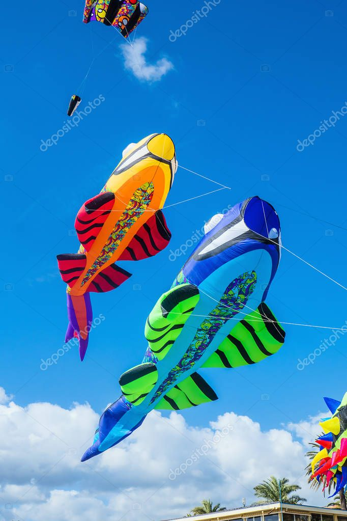 Fish-shaped colorful kites in blue cloudy sky