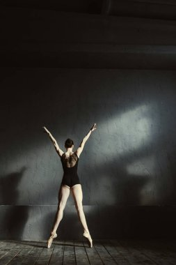 Charismatic ballet dancer stretching in the studio