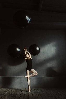 Feminine ballet dancer expressing elegance in the studio