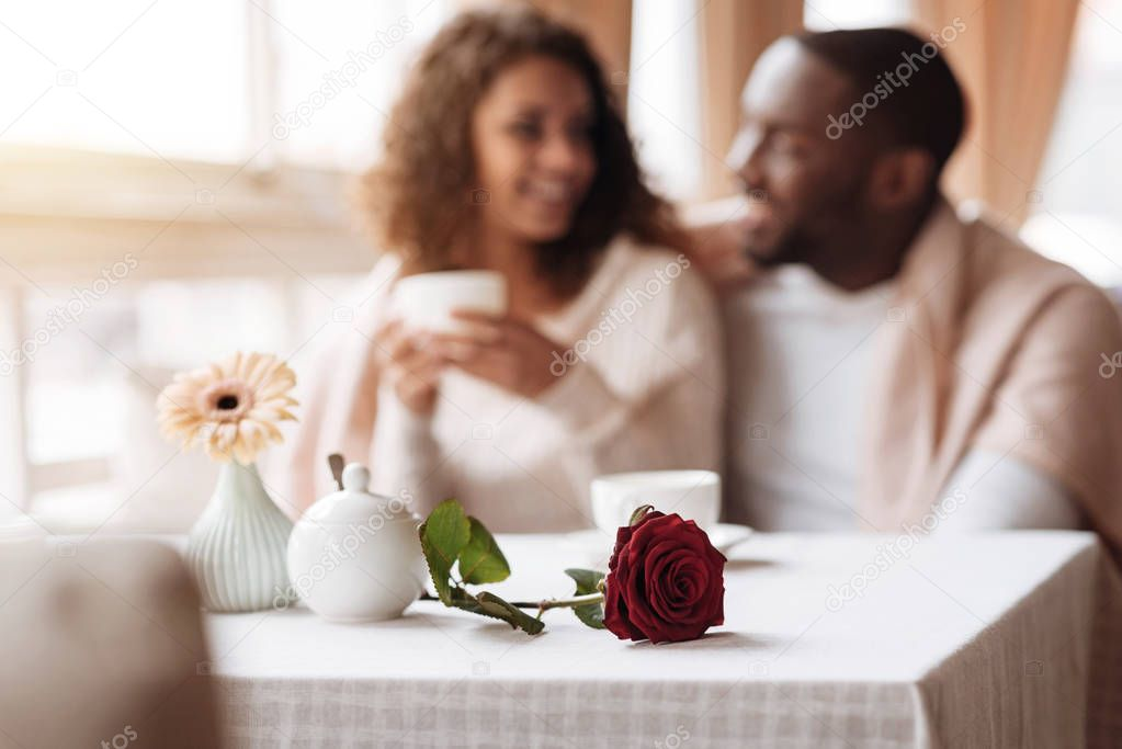 Positive African American couple having the date in the cafe