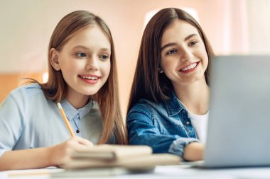 Pleasant teenage girls studying together in living room