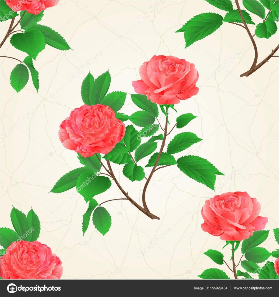 textura sem costura rosas flor rosa galho com folhas natureza fundo