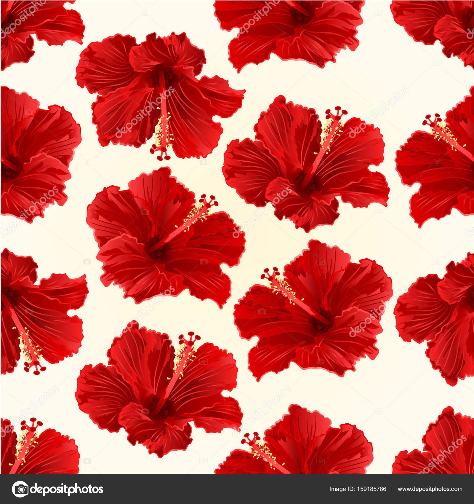 Texture Transparente Hibiscus Rouge Simple Tropical Fleur Vintage