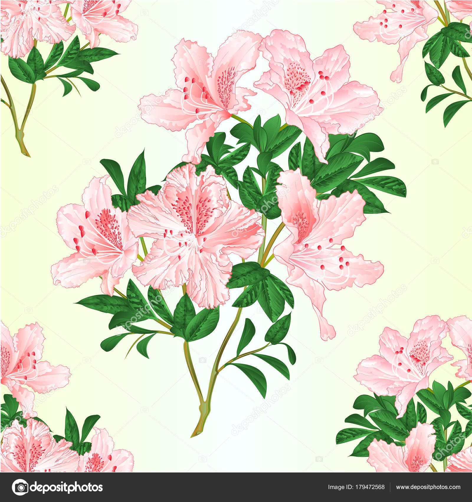 Seamless Texture Light Pink Flowers Rhododendron Twig Leaves