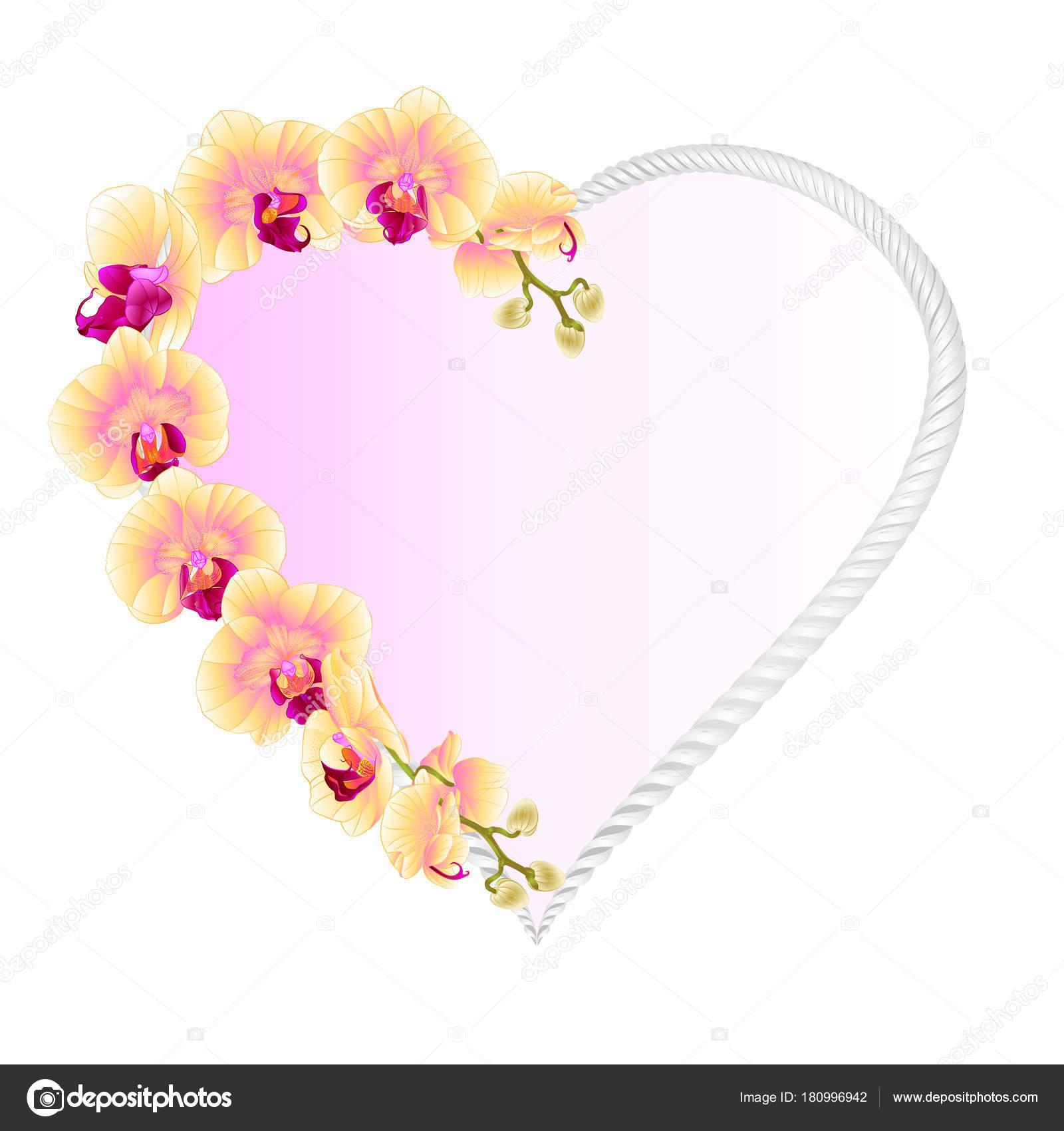 フレーム ハート蘭胡蝶蘭黄色花熱帯植物ビンテージ ベクトル ボタニカル