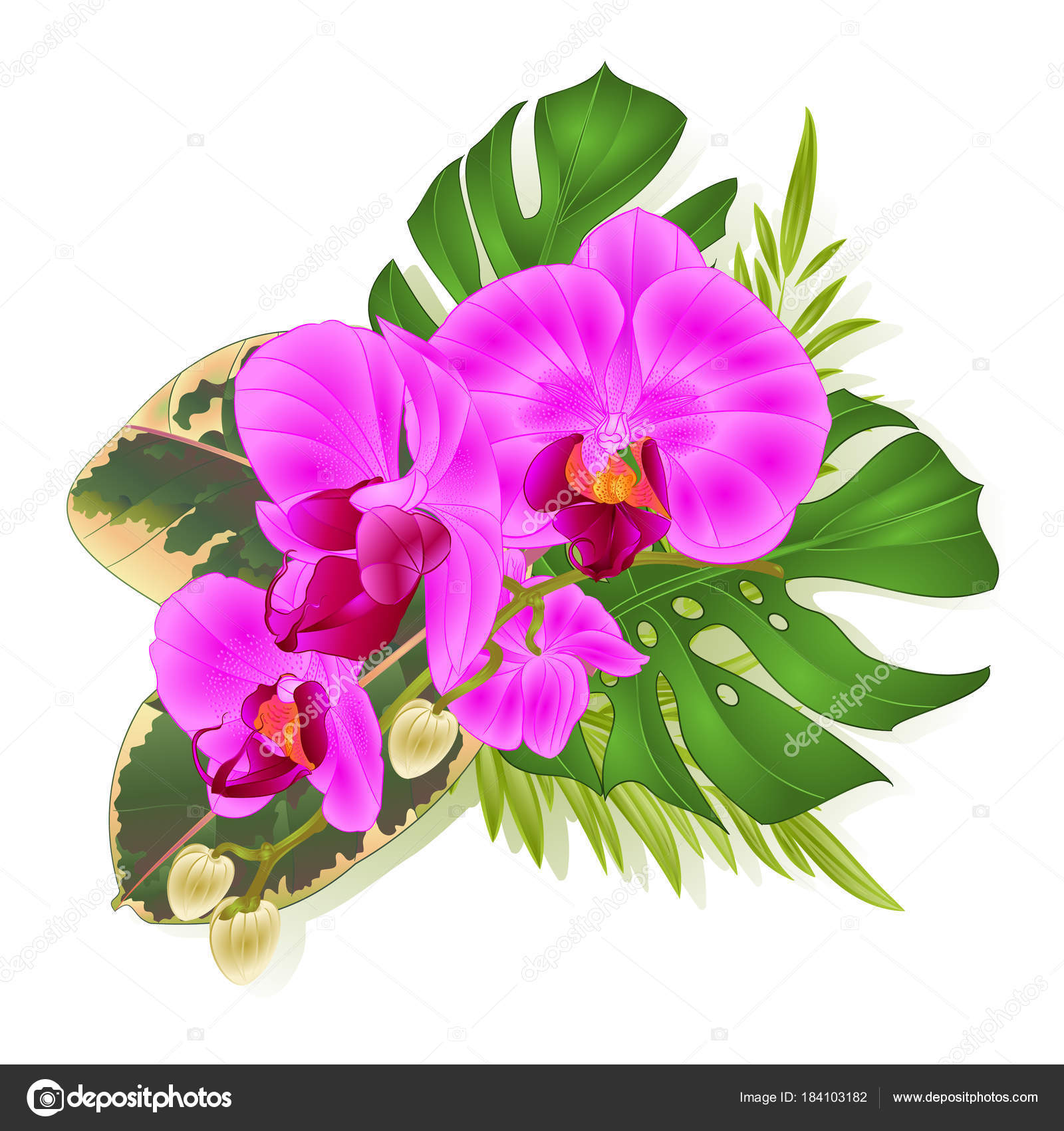 Bouquet tropical flowers hawaiian style floral arrangement beautiful bouquet tropical flowers hawaiian style floral arrangement beautiful purple orchid stock vector izmirmasajfo Gallery