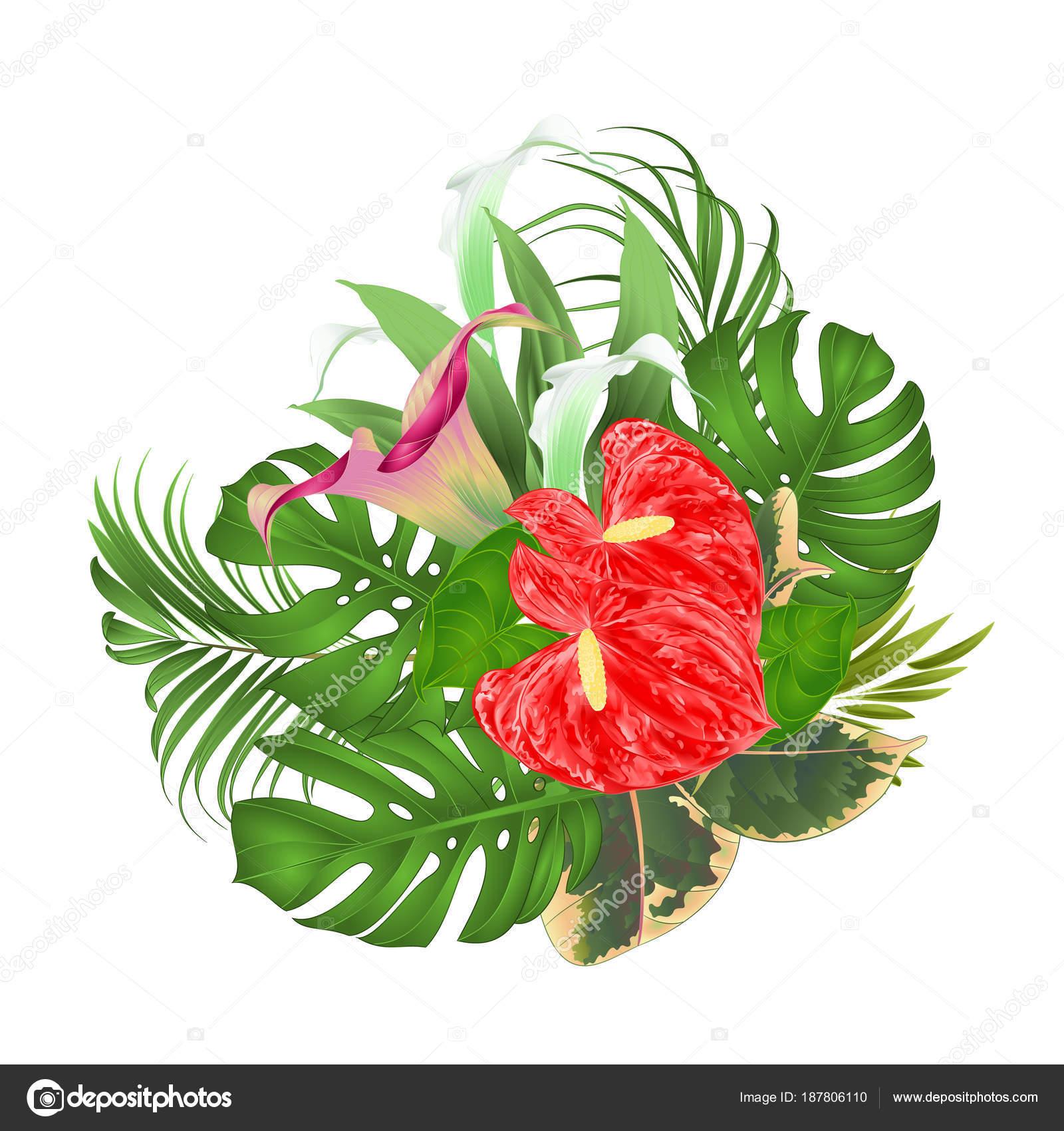 Imágenes Arreglos Florales Con Calas Bouquet Arreglo