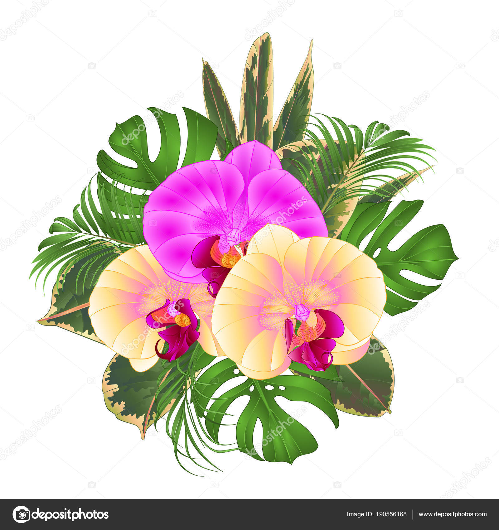 Bouquet Tropical Flowers Floral Arrangement Beautiful Yellow Purple