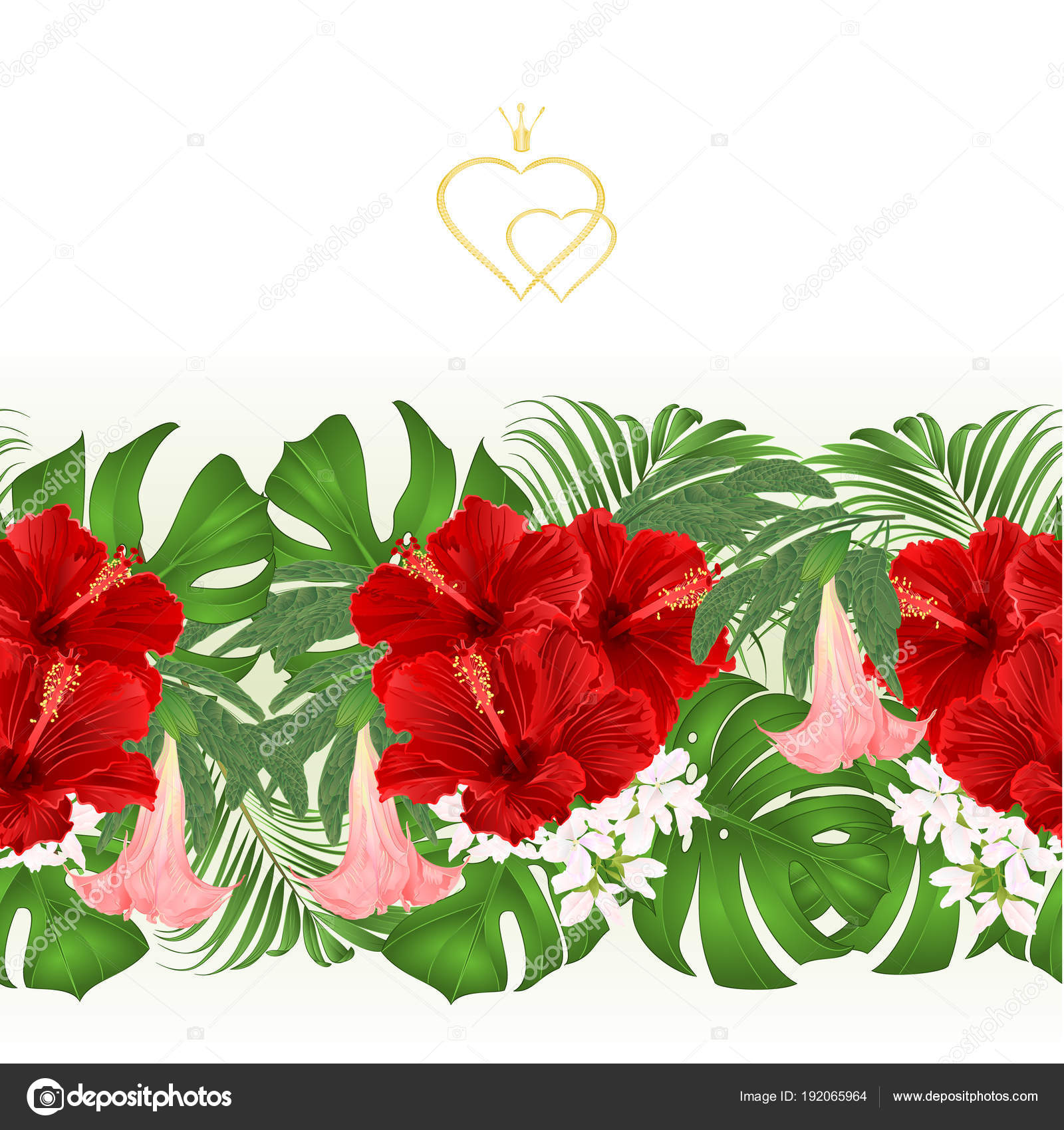 Floral Border Seamless Background Bouquet Tropical Flowers Floral
