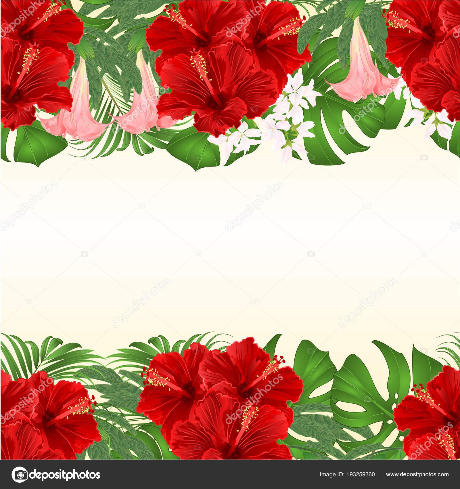 Ramo Floral Fondo Transparente Con Arreglo Floral Flores Tropicales