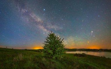 Milky Way over tree near lake