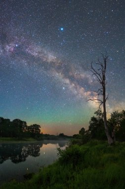 Milky Way over small forest lake