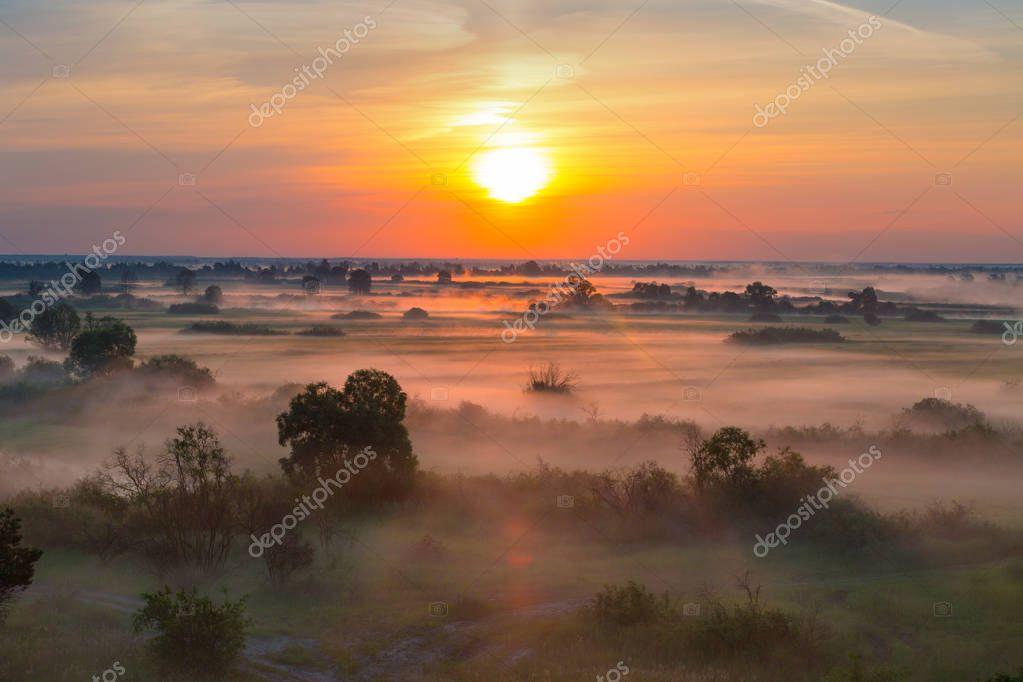 Фотообои Foggy morning landscape