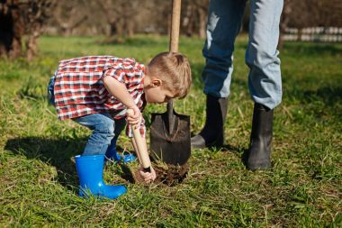 Close up of boy working with granddad in backyard