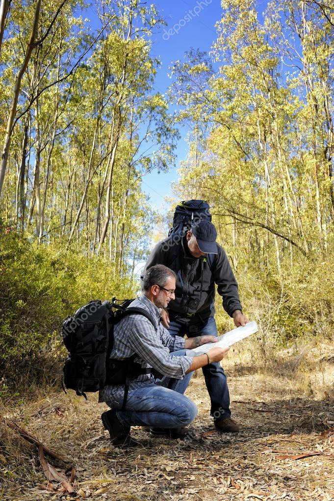 Hikers who study the way along a path nestled in the forest