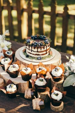 angle view of berry cake and cupcakes with blueberries and rosemary on wooden stumps