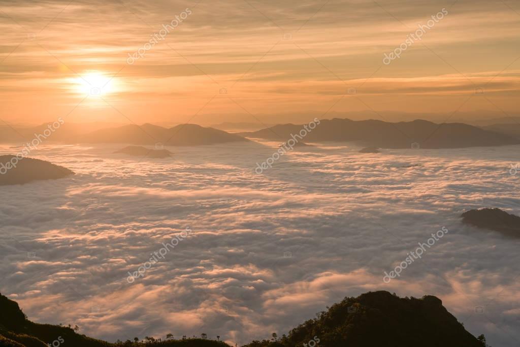 nature. Mountain Mist