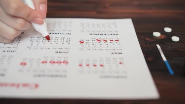 menstruation calendar with cotton tampons close up