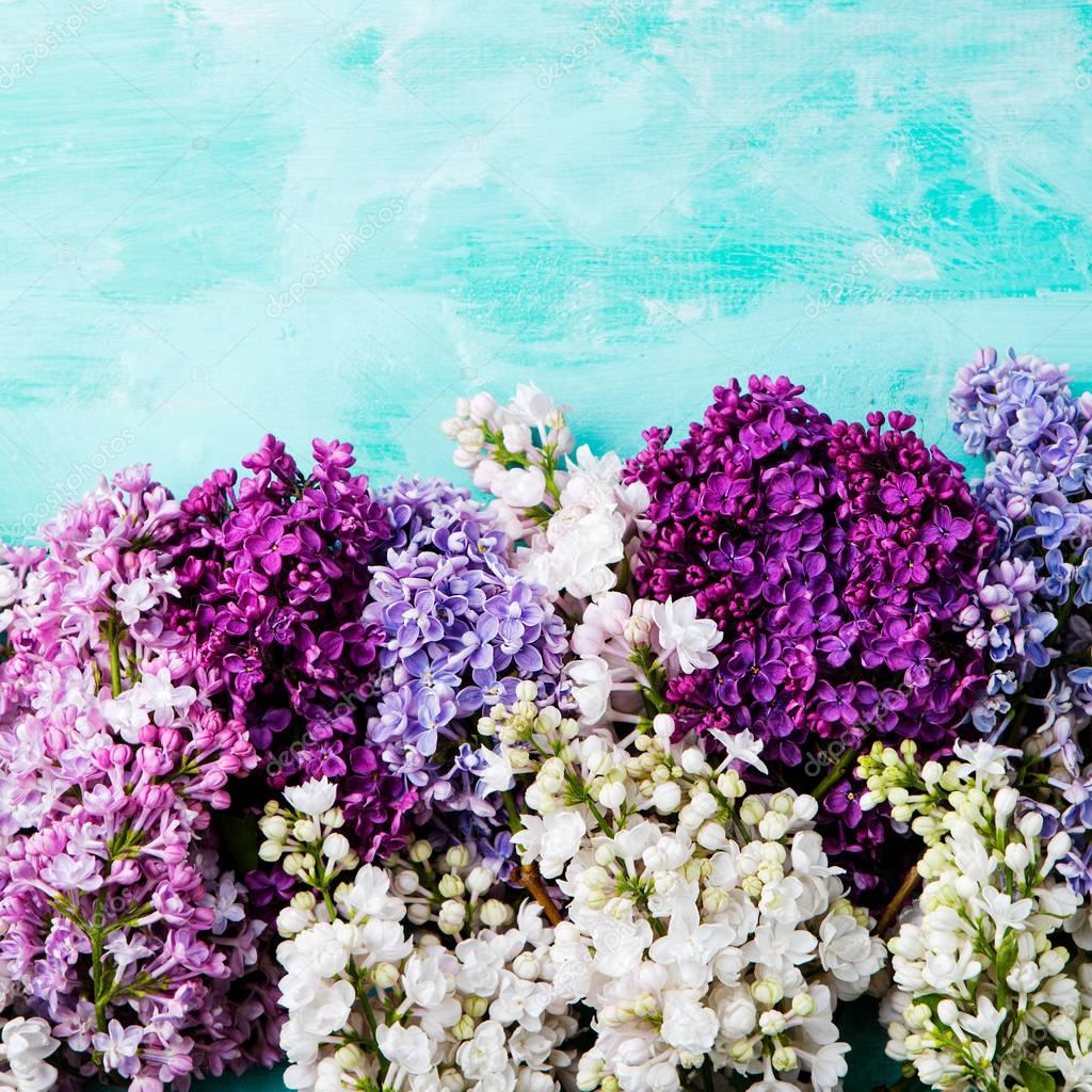 Bunch of lilac flowers on a turquoise background. Top view. Copy space
