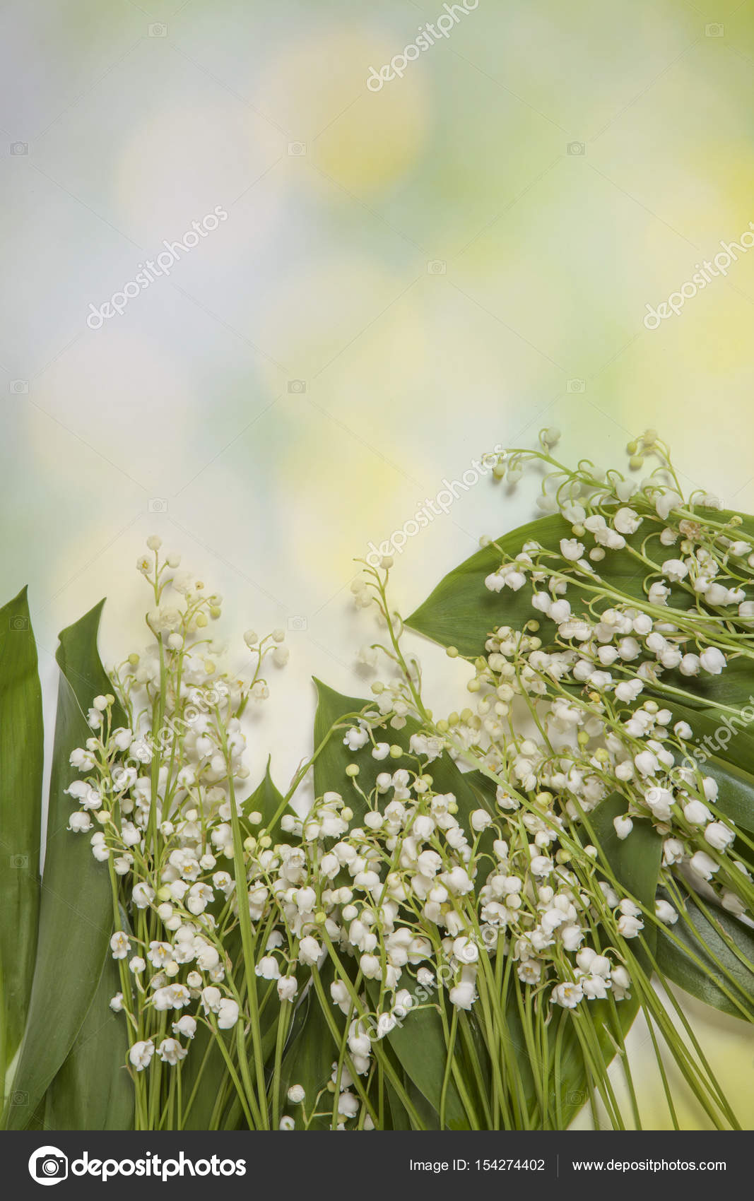 Fresh Spring Light Lilly Of The Valley Flowers And Leaves Bouquet