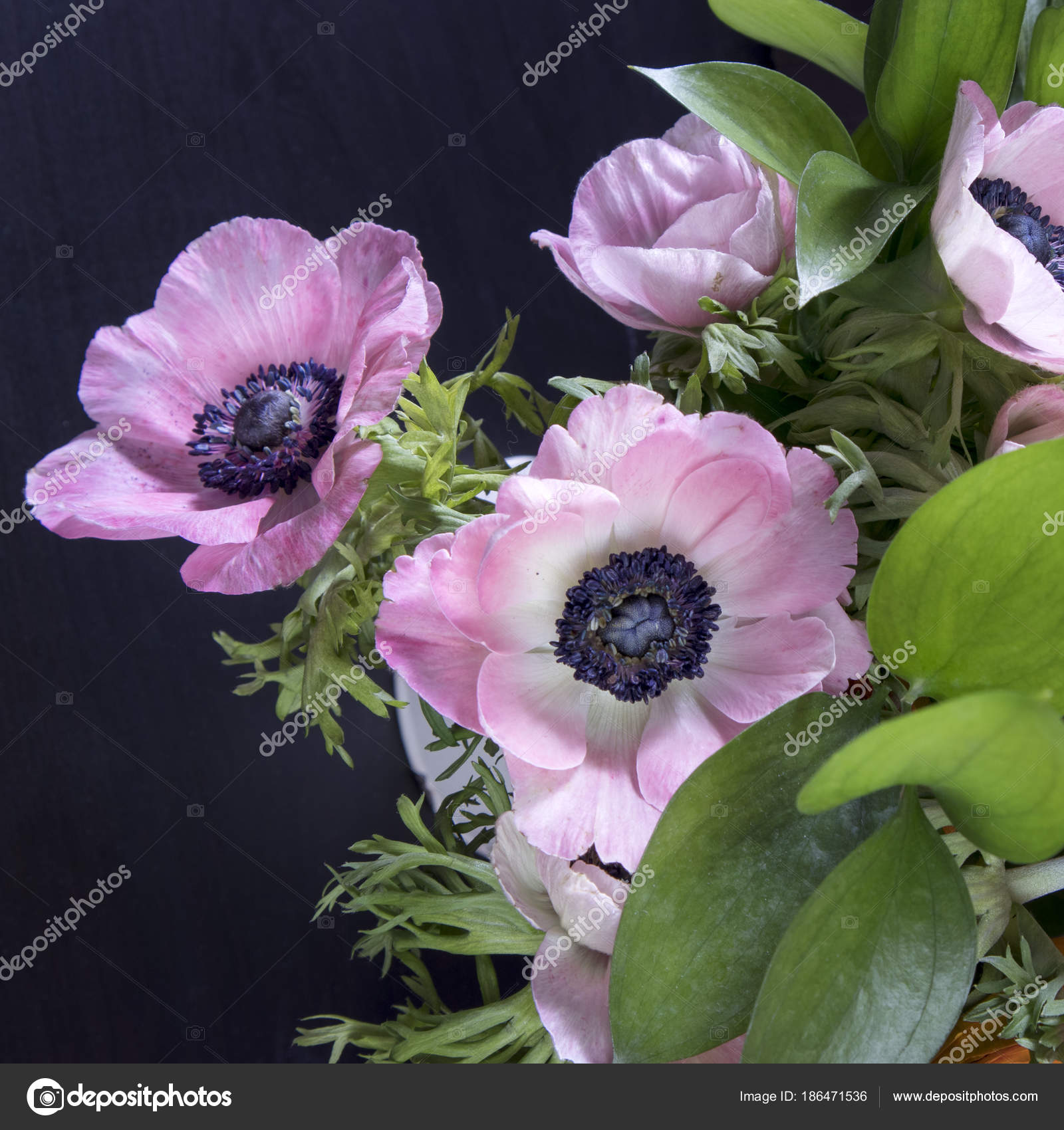 Wedding bouquet of anemones with ruscus in a jug on a black wedding bouquet of anemones with ruscus in a jug on a black background stock photo izmirmasajfo